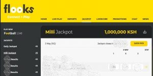 How to register and bet on Flooks Bet - step by step